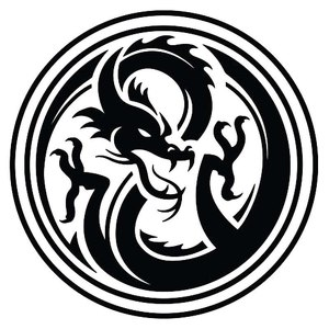 Team Page: Dragons in Black